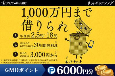 株式会社ジャパンネット銀行