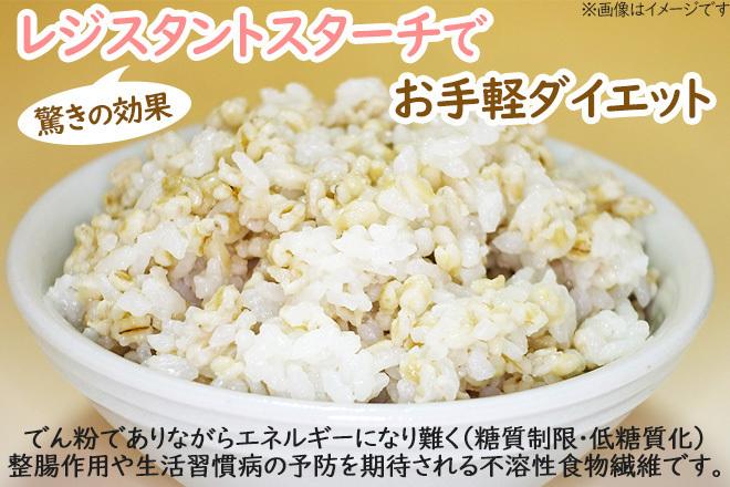 Large_oat_5