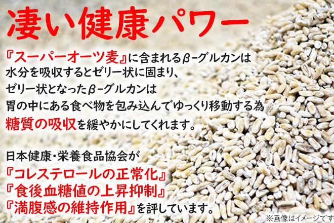 Large_oat_4