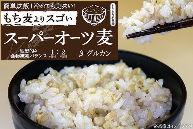 Large_oat_1