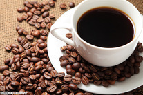 65%OFF【1,350円】≪☆送料無料☆ブラジルにふんわりとモカも香りをブレンドしたまろやかな味わいのブレンドコーヒー♪「マイルドブレ...