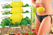 78%OFF【2535円】≪☆送料無料☆脂質と糖質カット!ダイエットの味方「パクチー美人3g×30包入り」 3個セット≫