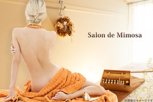 W300_large_140415__kpd023990_salon-de-mimosa______1__35000__2____