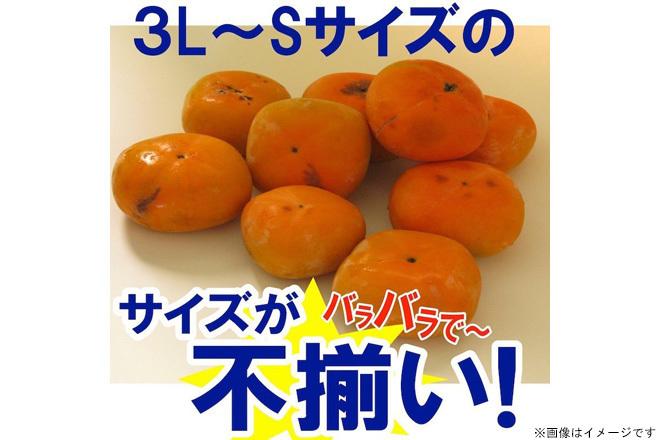 たねなし柿 3kg