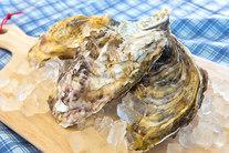 《送料無料》【お得!量売り!生牡蠣 殻付き Sサイズ/2kg】15~20個