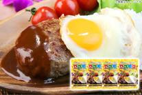 【980円】≪☆送料無料☆2分で手軽に味わえる!肉厚でボリューミーなハンバーグも入って大人も子どもも喜ぶおいしさ「ロコモコ丼の素160g...